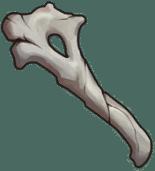Хрупкие останки Genshin Impact