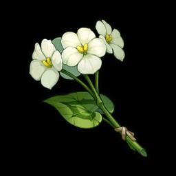 Цветок цинсинь genshin impact