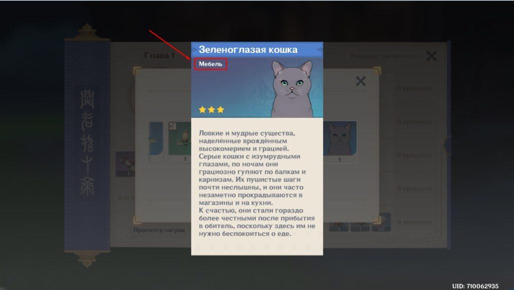 Зеленоглазая кошка genshin impact